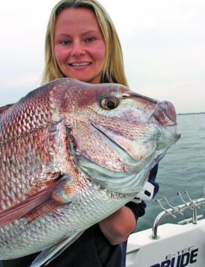 Good snapper like this will show up clearly on the sounder.