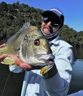 Flats fishing with surface lures like this Pro Lure SF62 is a very visual style of catching bream. The take and battle are second to none in skinny water on light tackle.