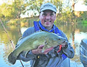 Mark Ainsworth with his cracking Murray cod.