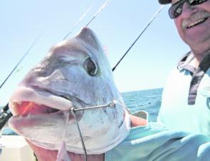Snapper have tough jaws so it pays to use good quality hooks that you can to secure a good hook up.