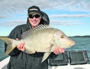 Spangled emperor can be a great by-catch when targeting snapper in the shallower water.