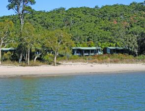 There is lots of eco-friendly resort accommodation on Fraser at Kingfisher Bay.