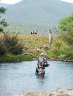 Ian Jones fishes the Meander River with an audience.