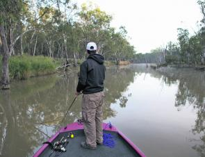 Now that the Murray cod season has closed anglers need to downsize their offerings and focus on landing their casts as close to structure as possible to attract golden perch.