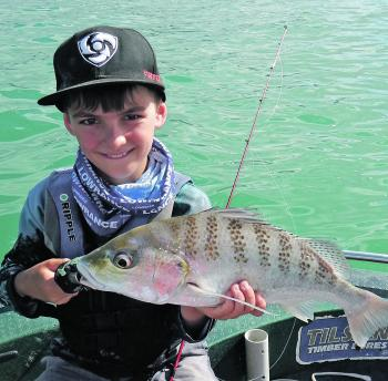 It's always worth casting a slice at the channel markers on the way past. The young fella cast his favourite Halco Twistie at a beacon for this one.