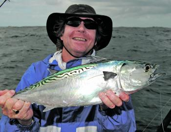 A few mack tuna will be around. These fish are great fun on light line and awesome bait.