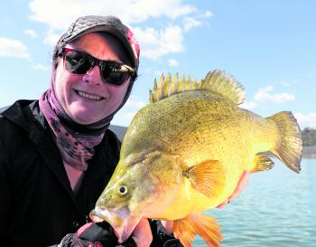 In the opening round of The Australian Freshwater Masters, competitors targeted the aptly-named golden perch or yellowbelly of Lake Windamere.