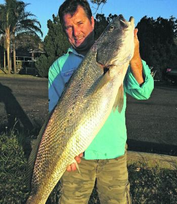A great mulloway catch – pick your moon phases, tidal changes and hang on.