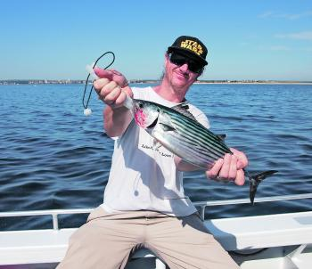 Don't forget to put a couple of lures out the back while moving from spot to spot, as the bonito will be about.