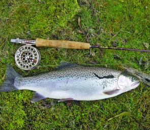 Deep fishing with wet flies can turn up some wonderful rainbow trout at Dee Lagoon.