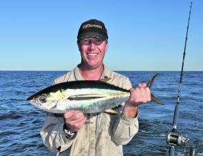 School yellowfin tuna have been thick at South Solitary Island and Bullocky Reef at times. It could be even be worth bridling one up for a really big mackerel.