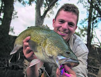 Jack Zyhalak with a lovely Murray cod caught in June casting a pink and purple Mud Guts Spinnerbait.