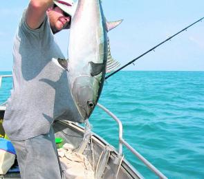 This longtail tuna was pinned from a small dingy in Princess Charlotte Bay, one of the great places to visit on the east coast of Cape York.
