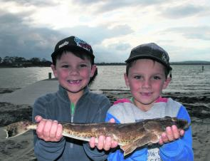 Liam and Connor Ling with a larger than average sand flathead.