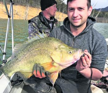 Luke Muscat nailed this chunky yella recently, and is a great sign of things to come.