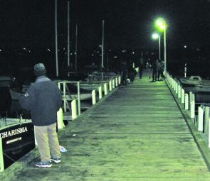 The piers and platforms have been very popular at night for calamari anglers.