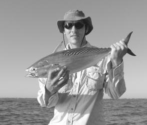 A reasonable mack tuna taken on a Bumpa Bar that was cast and retrieved.