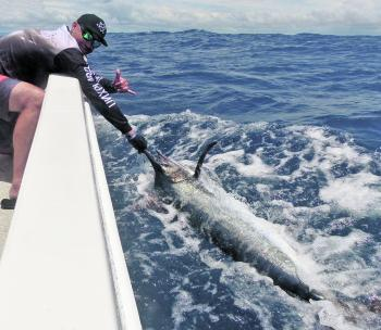 Mick Horn was over the moon with his first black marlin