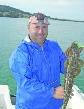 Flathead have fired up with the influx of warm water. This one was caught near Jerseyville bridge.