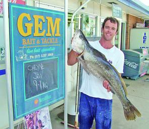A regular to the Gem weigh-in station, Cheyne with another quality offshore jew.