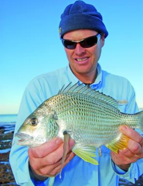 John Grant caught this bream he caught while fishing for pigs with bread baits at Norah Head.