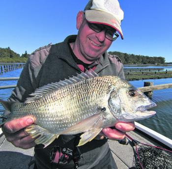 The bream in the lake are in top condition and have plenty of fight in them around the racks.