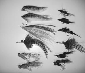 Some of the author's favourite golden perch flies: Bass Vampires, Clousers, Mrs Simpsons and other goldfish, yabby, frog, mudeye and shrimp patterns.