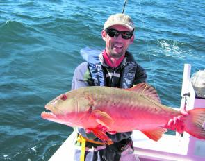 Nathan with a horse of a coral trout caught while tagging in the green zones.