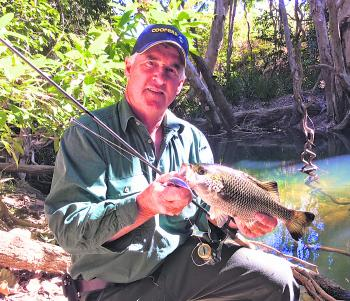 The author's father had a great time fishing in small pools for chunky jungle perch like this one.