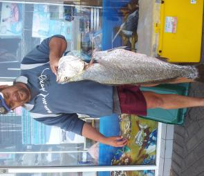 Local Derek Baker caught this 10kg jewfish in the Lansdowne River on a soft plastic.