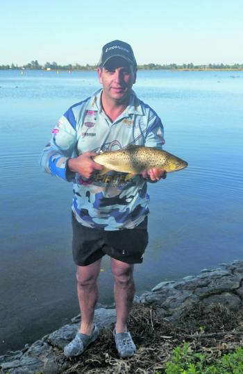 This Lake Wendouree Brown trout was caught by the author on a mud eye fished under a bubble float.