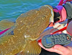 What better combination? A great flatty in one hand and the other controlling the boat.