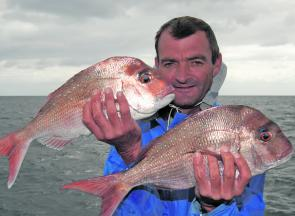 A few smaller snapper have started to trickle through but you have to work for fish like these schoolies Chris caught.