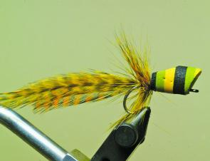 Re-attach the thread behind the popper head and tie in two more dyed yellow hackles.