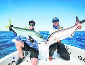 The Tide boys whipping up some pelagics offshore with a solid kingie and another wicked amberjack. (Photo courtesy of Andrew Mckinstray)