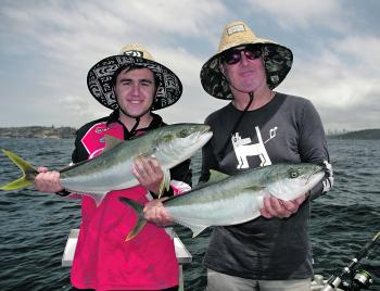 A pair of quality North Head kingfish.