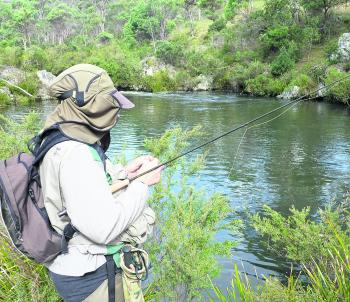 Which fly now? New England streams offer a lot of choices for fly anglers.