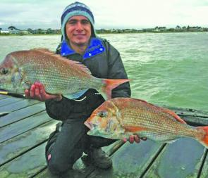 Eren Gruven with part of a nine fish haul of reds he and some mates caught off Mordialloc Pier.