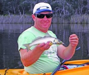 Whiting will be eager to smack a quickly worked surface lure.