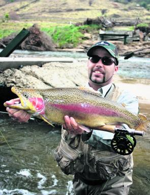 This ANSA length-only national record rainbow trout was caught on fly by the author while shooting his Luring for Wild Trout DVD. The Goobragandra River was an outstanding big-trout fishery last season thanks to floods and rains bringing large amou