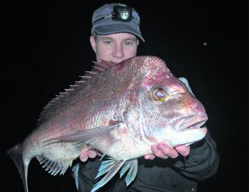 Quality bay snapper such as this thumper are on the cards over the next few months for anglers fishing the artificial reefs, wrecks and bay island margins.