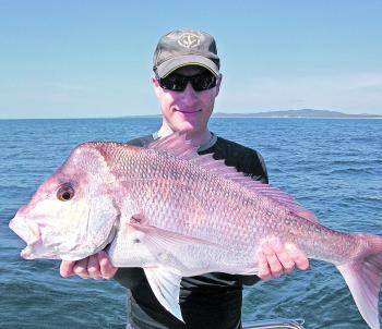 Plenty of snapper have been caught recently.