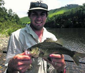 Bass numbers will improve in the lower reaches this month. Greg Packer caught this model in the Hastings River but surrounding waterways also hold their fair share.