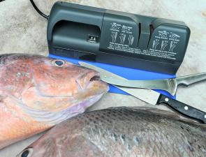 Sharp knives are essential for effective fish cleaning. Starlo swears by his Nirey electric knife sharpener for keeping a wickedly keen edge on his blades.