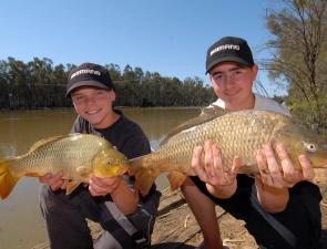 Carp are back in a big way along most of the Murray and although they are a pest, young anglers relish their excellent fighting qualities on light tackle.