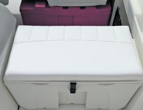 This upholstered icebox is part of the optional 'comfort pack'.