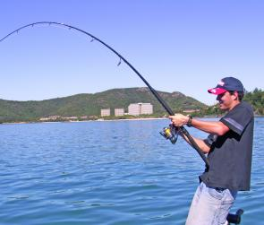 Hooked up to a hefty GT with the resort of Hamilton Island in the background.