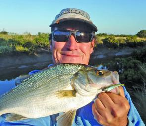 Gav Fallon with a nice estuary perch taken from a Western Port creek.