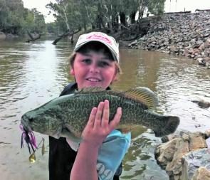 Local fishing guru Zach Jones had has skills tested when this decent Murray cod took his slow-rolled spinnerbait at Old Man Creek.