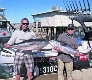 Two quality longtail tuna that ate baits meant for Spanish mackerel.